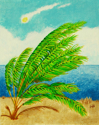 Palm, Wind and Sun